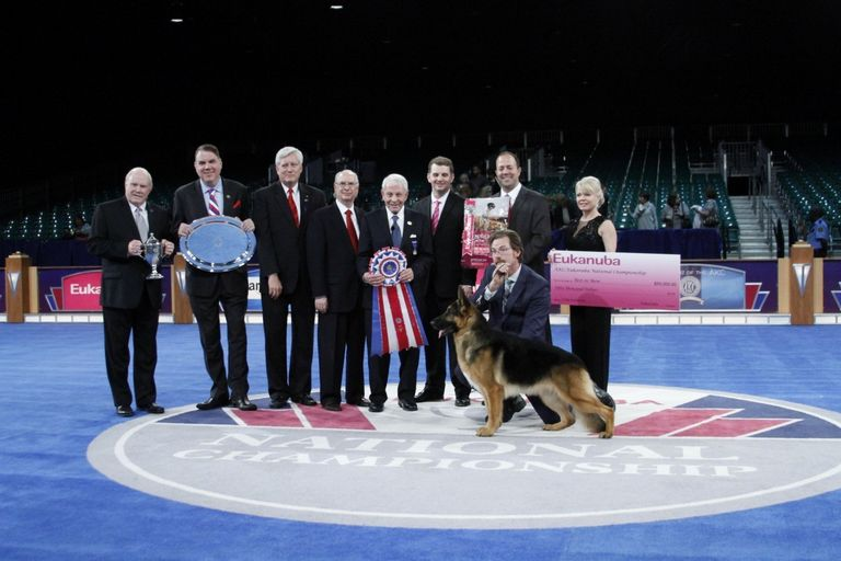 Akc Dog Show Results