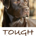 Badass Guard Dog Names (1)