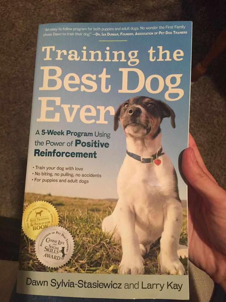 Best Dog Training Books Reddit