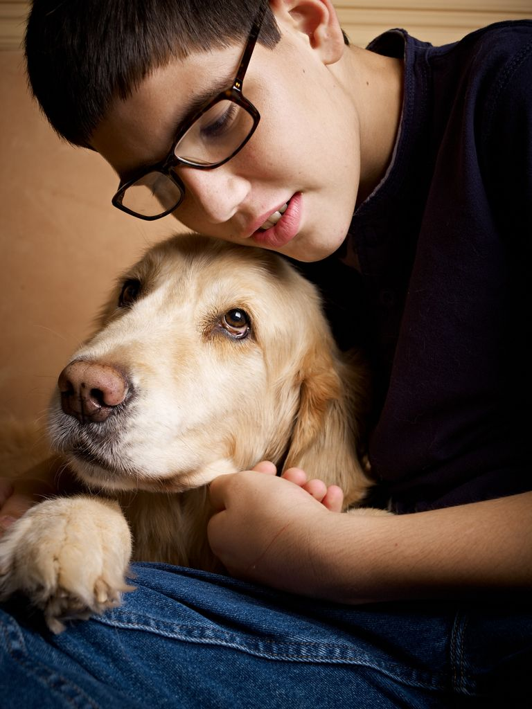 Best Therapy Dogs For Adhd
