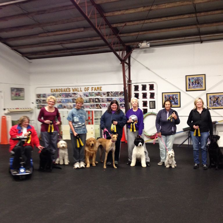 Cardunal Dog Training