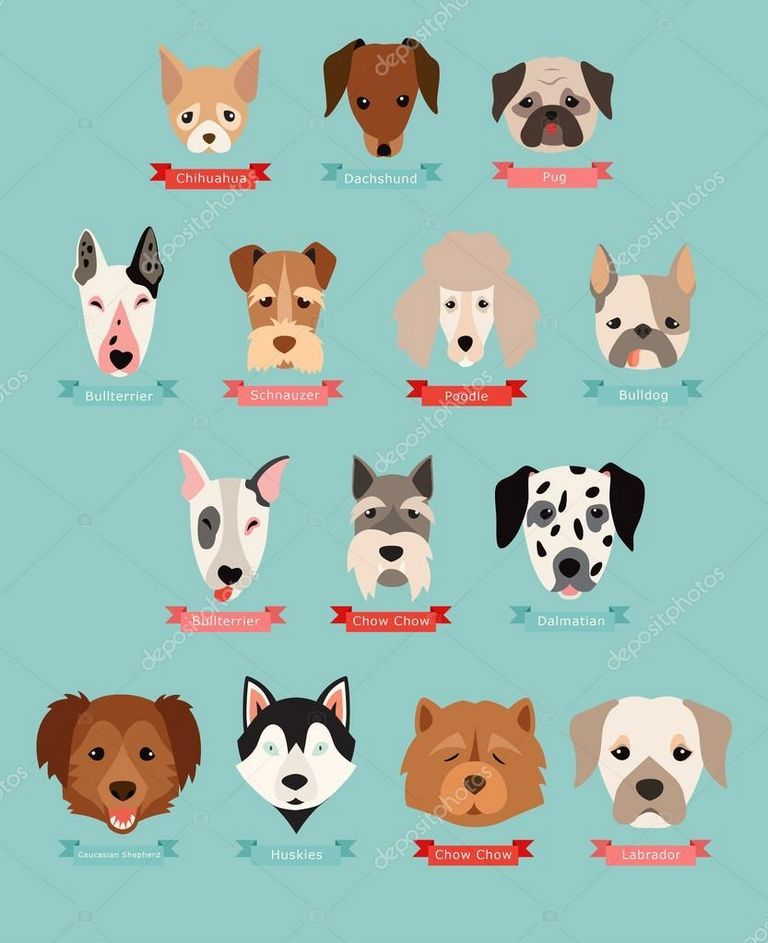Dog Breed Games