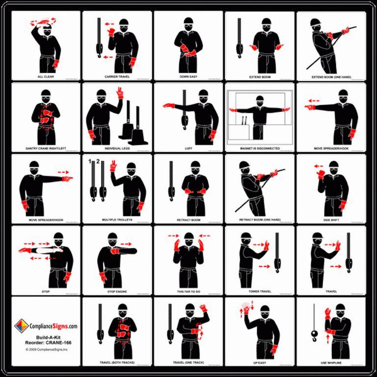 Dog Hand Signals Chart