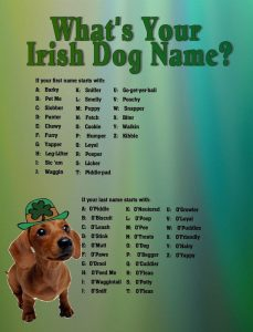 Dogs Names Beginning With H