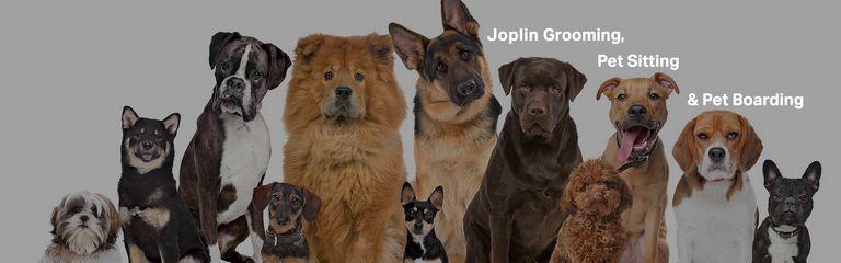 For Pet's Sake Joplin Mo