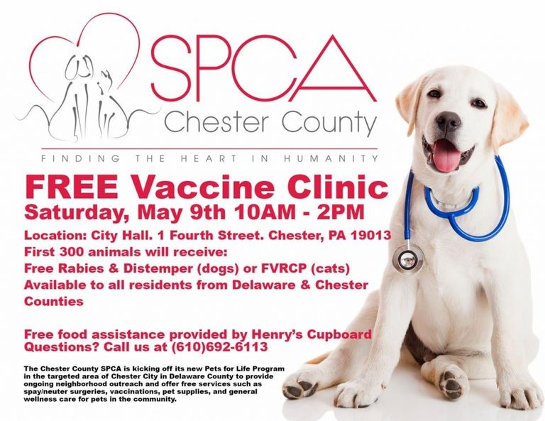 Free Dog Vaccinations Near Me