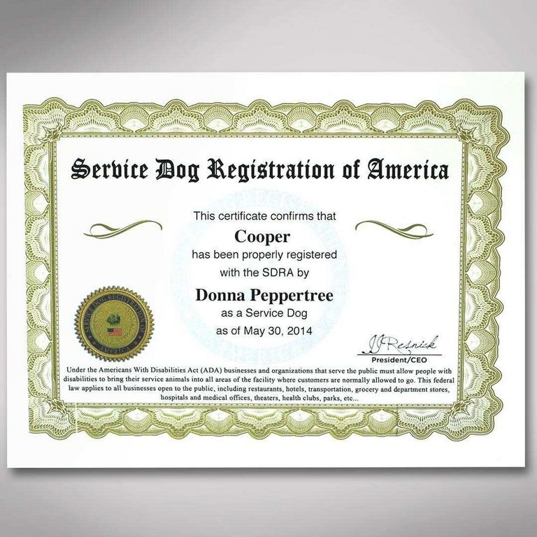 Free Service Dog Registration