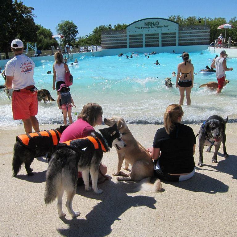 Grand Haven Animal Shelter