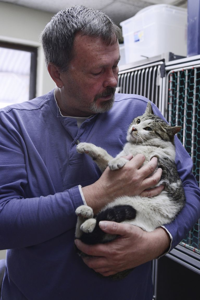 Homeward Bound Pet Adoption