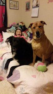 Hopeful Paws Dog Rescue