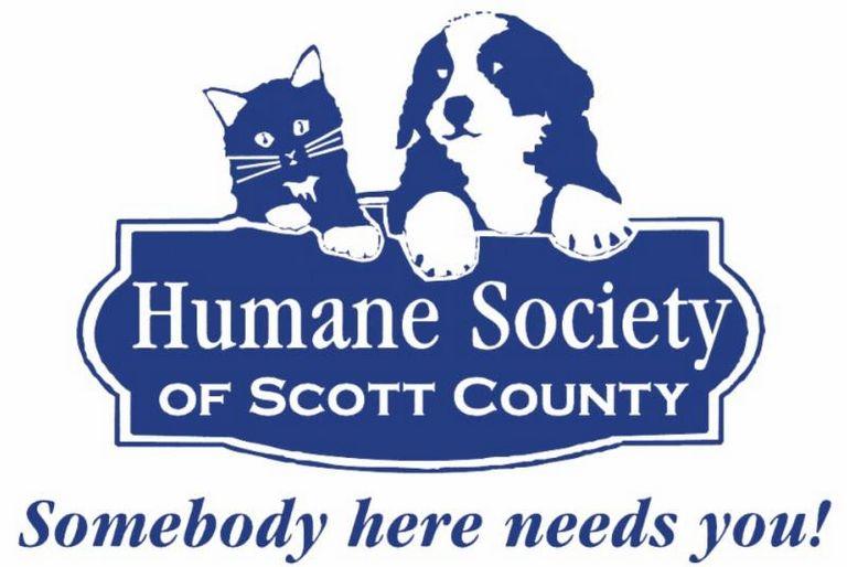 Island County Humane Society