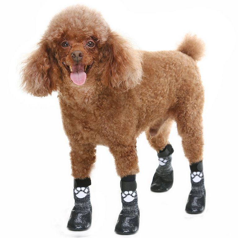 Kooltail Dog Socks