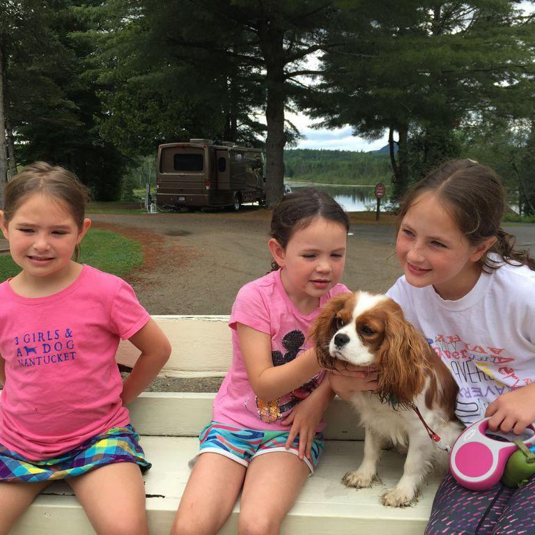 Lake Charles Puppies
