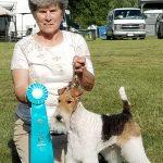 Lorain County Kennel Club