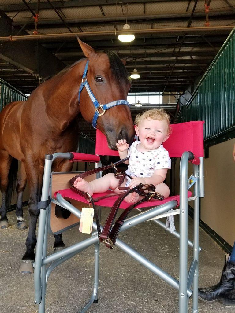 Missouri Horse Association