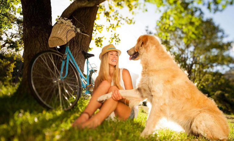 Odessa Animal Shelter