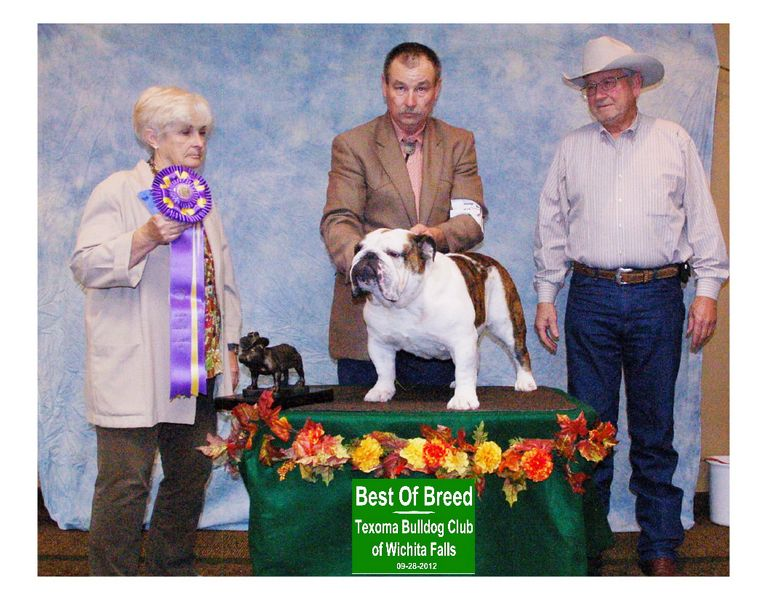 Oklahoma Bulldog Rescue