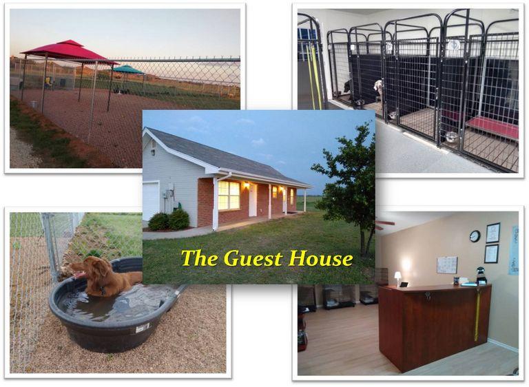 Pet Resort Abilene Tx
