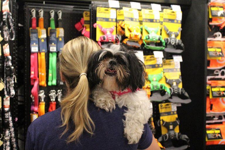 Pet Store Woodbury Mn