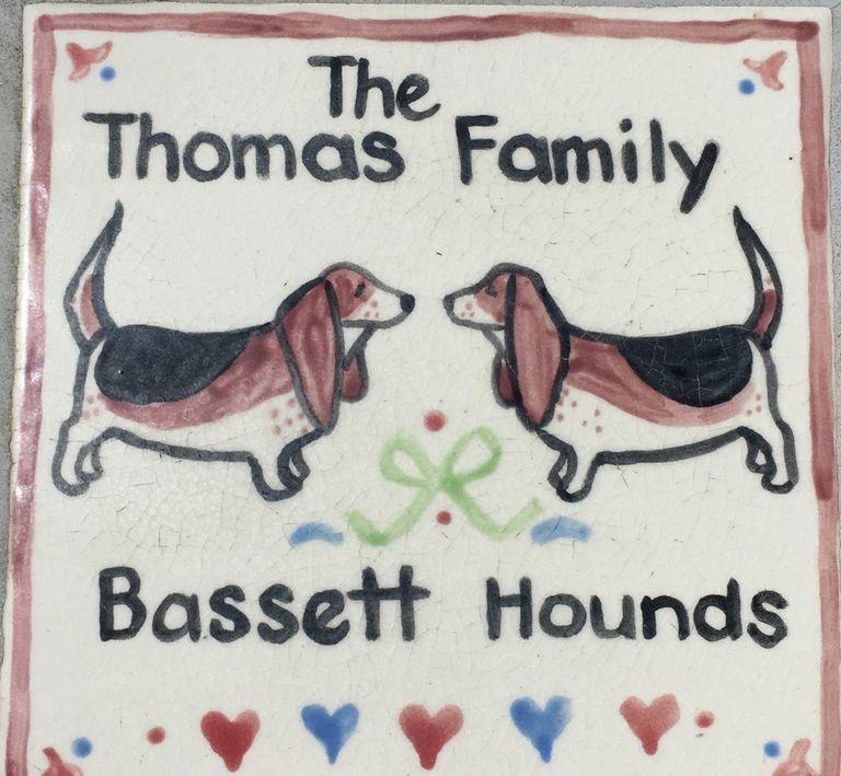 Pocket Beagles Arizona