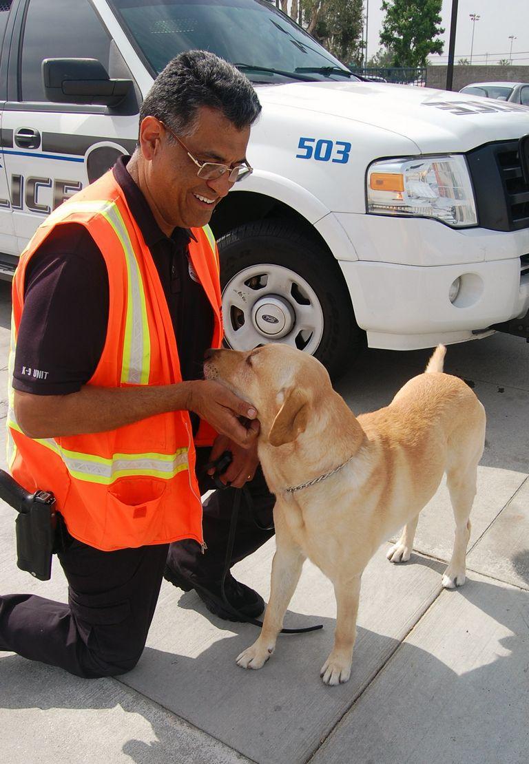 Police Dog Hand Signals