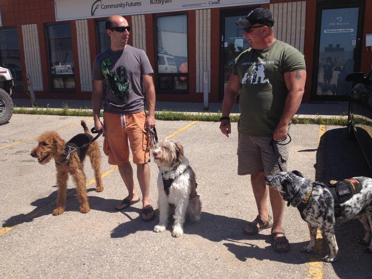 Ptsd Service Dog Cost