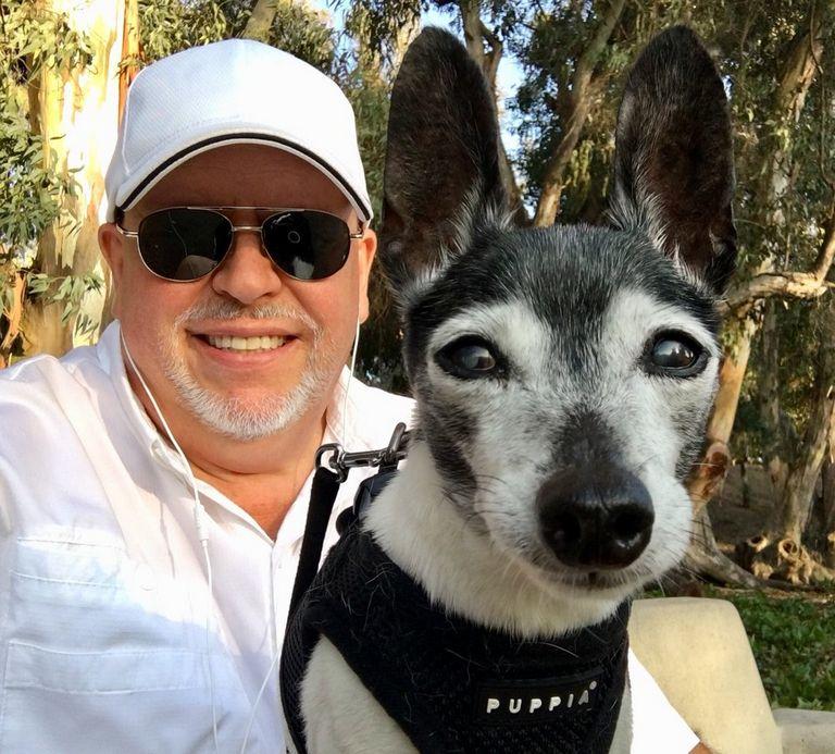Pug Rescue Reno Nv   Top Dog Information