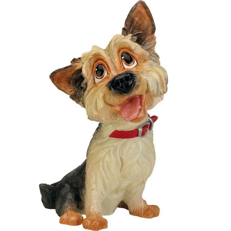 Rufus Bull Terrier Puppies