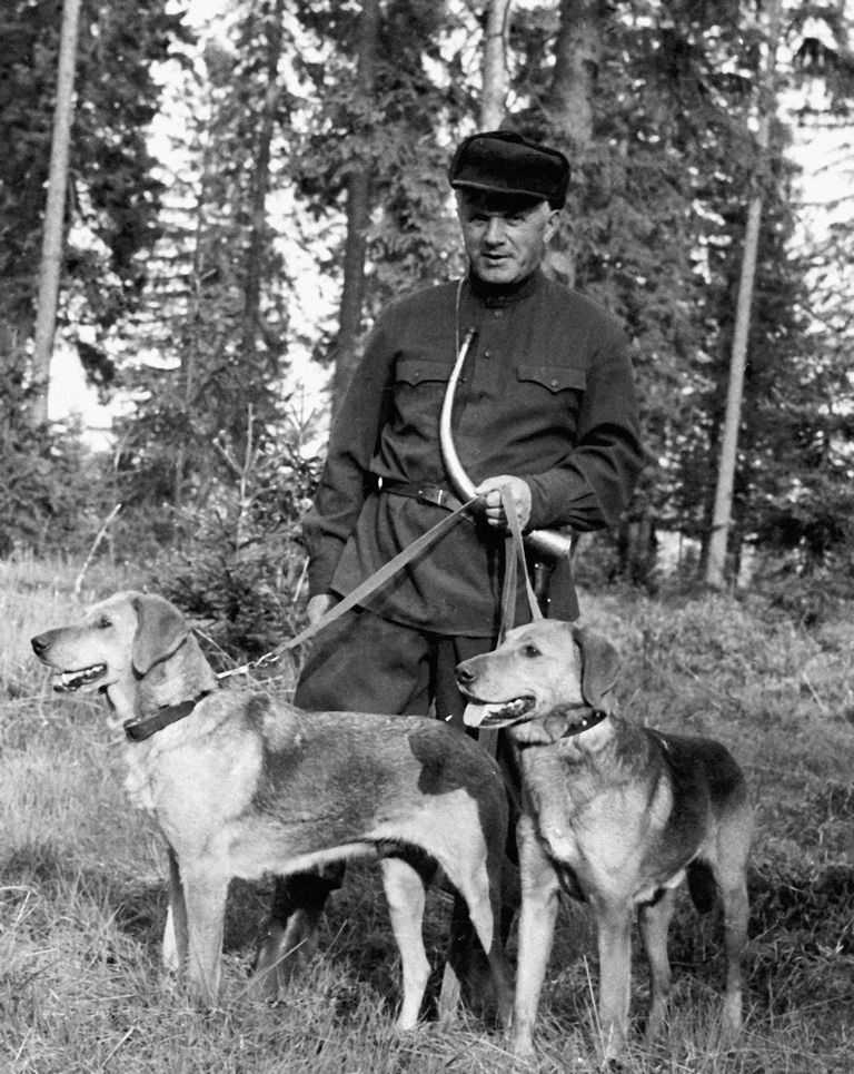 Russian Dog Names For German Shepherds