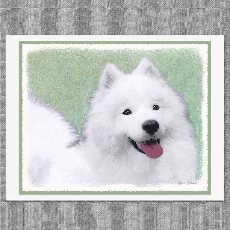 Samoyed Puppies Price