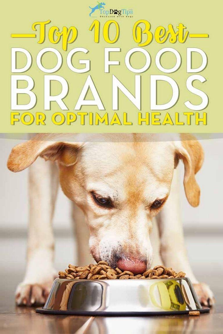 Top 10 Dog Foods