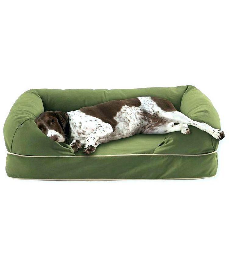 Top Paw Cuddler Bed