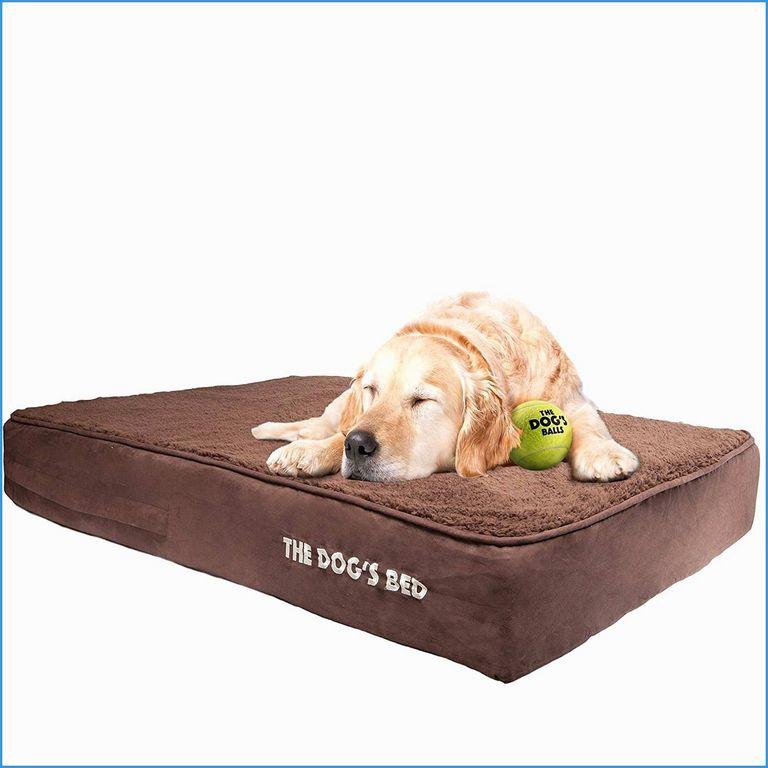 Top Paw Cuddler Dog Bed