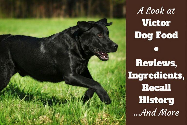 Victor Dog Food Recall 2018