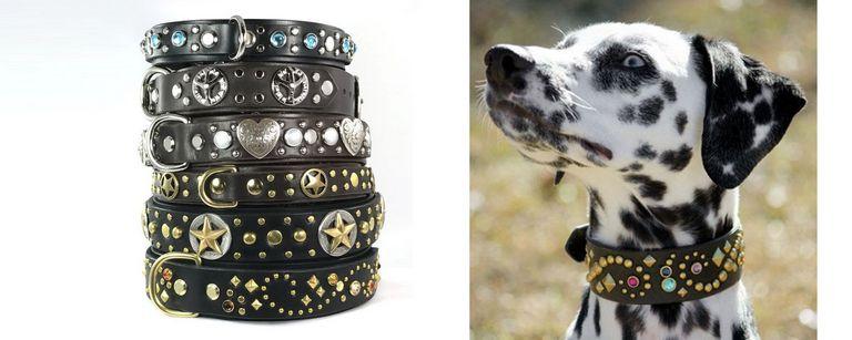 Western Leather Dog Collars