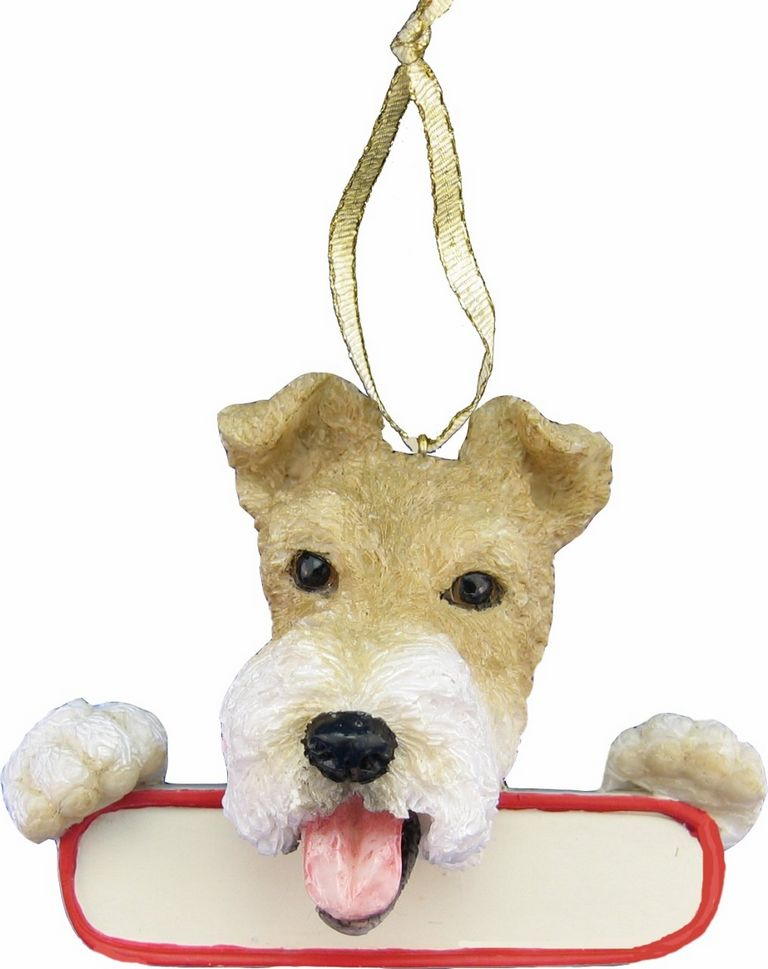 Wire Fox Terrier Looking For New Home
