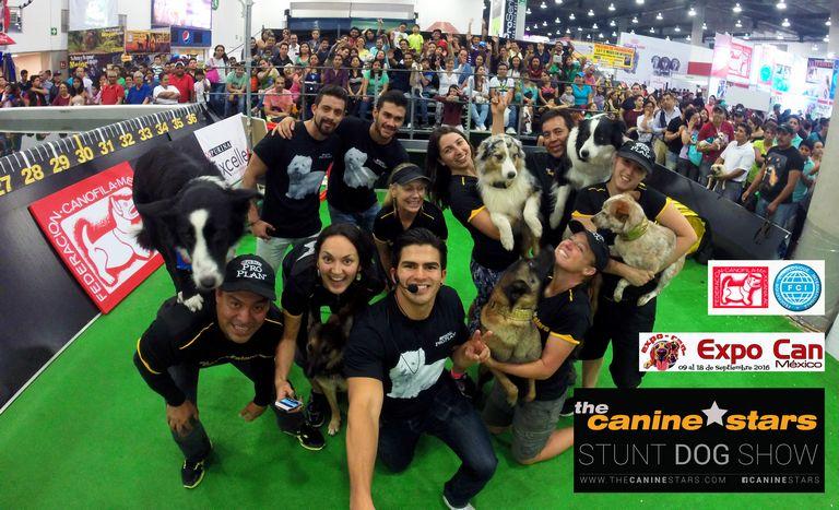 World Dog Show 2018 Venue